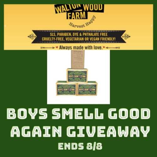 Enter the Boys Smell Good Again #BTS #SMGN Gift Guide #Giveaway before it ends 8/8 for a chance to #WIN 3 giant bars of Boys Don't Stink Soap. #Contest #BackToSchool