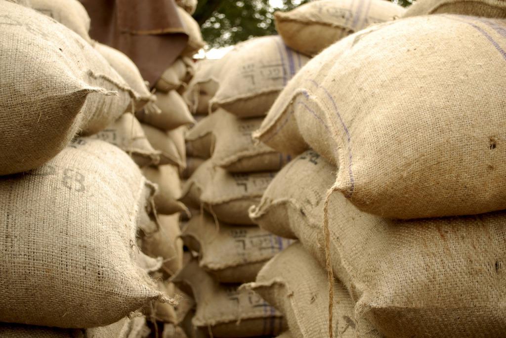 カカオ豆からチョコレートができるまでの製造行程
