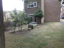 A garden, repopulated and trimmed back, with BBQ made from found concrete slabs