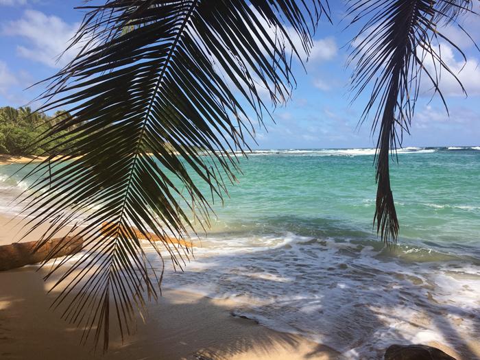 5_kauai