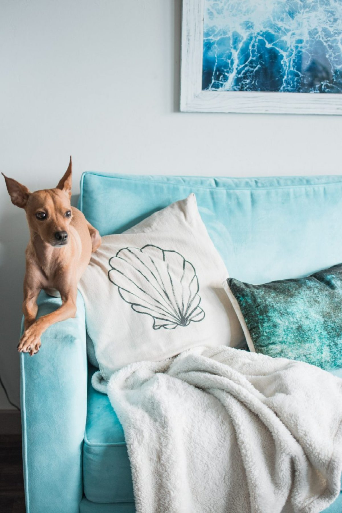 Boho Tropical Living Room featuring Gunner on Couch