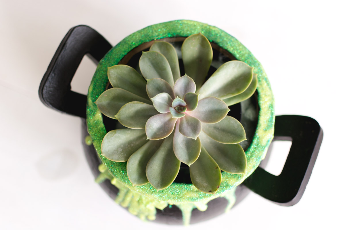 slime witch's pot succulent planter - sweet teal