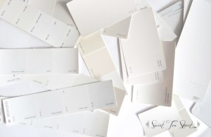 white-paint-chips