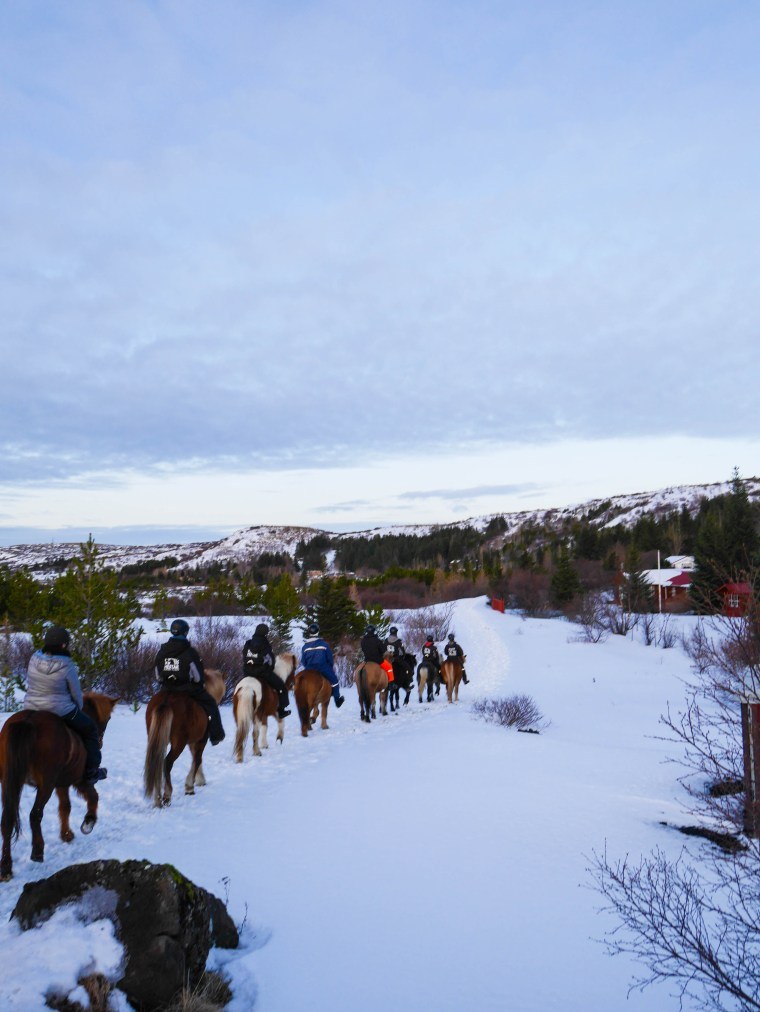Icelandic Horseback Riding through the Tundra | www.sweetteasweetie.com