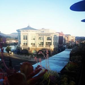 Downtown Napa www.sweetteasweetie.com