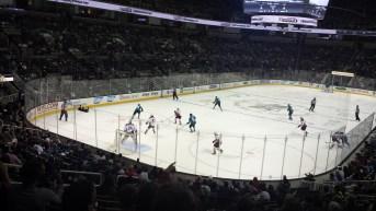 San Jose Sharks www.sweetteasweetie.com