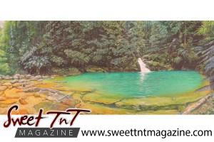 Artist Cliff A Birjou, Rio Seco, Sweet T&T, Sweet TnT, Trinidad and Tobago, Trini, vacation, travel