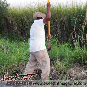 Farmer Fyzul Khan, father Candida Khan and Katrina Khan work the land, wears white t shirt, brown khaki long pants in Sweet T&T, Sweet TnT, Trinidad and Tobago, Trini, vacation, travel