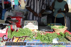 Farmers' Market at Queen's Park Savannah, Port of Spain vendor selling seasoning, shadon beni, celery, parsley, chive, oranges, in baskets, Muslim women in background, in parking lot in Sweet T&T, Sweet TnT, Trinidad and Tobago, Trini, vacation, travel