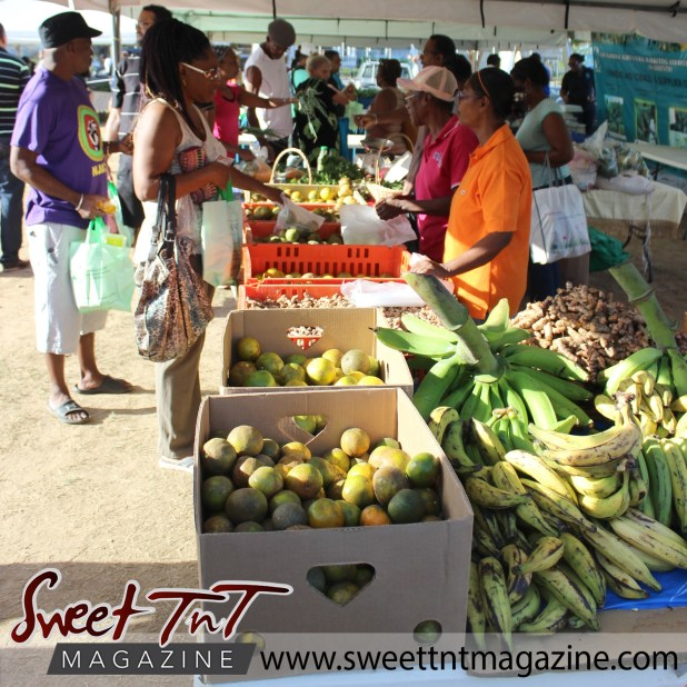 Rasta woman speaks to vendor wearing orange t shirt next to woman wearing red t shirt and pink hat, ripe plantain, green plantain, bananas, oranges, tangerines at Farmers' Market at Queen's Park Savannah, Port of Spain in parking lot in Sweet T&T, Sweet TnT, Trinidad and Tobago, Trini, vacation, travel