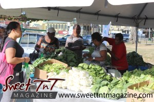 Woman with pink bag, black blouse, grey pants, stands by box of ochroes, leafy vegetables, cabbages, lettuce, woman holding callaloo bush, dasheen bush at Farmers' Market at Queen's Park Savannah, Port of Spain in parking lot in Sweet T&T, Sweet TnT, Trinidad and Tobago, Trini, vacation, travel