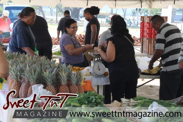 Smiling vendor wearing purple t shirt selling pineapples to woman wearing black frilly outfit at Farmers' Market at Queen's Park Savannah, Port of Spain in parking lot in Sweet T&T, Sweet TnT, Trinidad and Tobago, Trini, vacation, travel