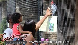 Family petting bird, Emperor Valley Zoo, Sweet T&T, Sweet TnT, Trinidad and Tobago, Trini, travel, vacation, animals
