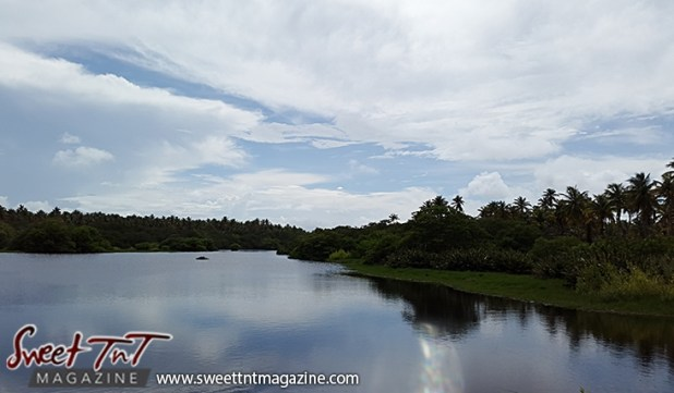 Icacos calm water grass coconut trees blue sky by Marika Mohammed for story Icacos end of Trinidad in Sweet T&T, Sweet TnT, Trinidad and Tobago, Trini, vacation, travel