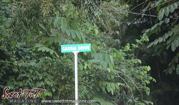 Cassia Drive sign on Lady Chancellor Hill Port of Spain for story original outdoor gym in Sweet T&T, Sweet TnT, Trinidad and Tobago, Trini, vacation, travel