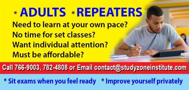 Study Zone Institute AD - articles corn fritters, banana bread, banana fritters, quiche, veggie one pot