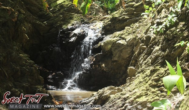 Paria Waterfall journey workout for hikers by Marika Mohammed. Sweet T&T, Trinidad.