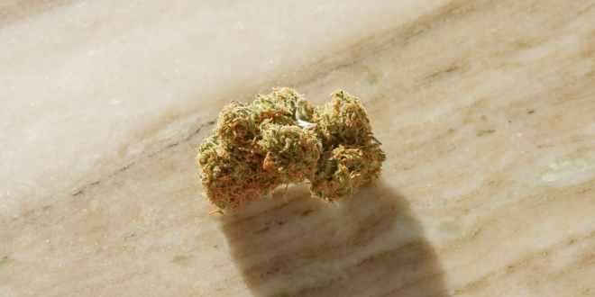 Weed accessories. Close up photo of cannabis flower on top of wooden surface