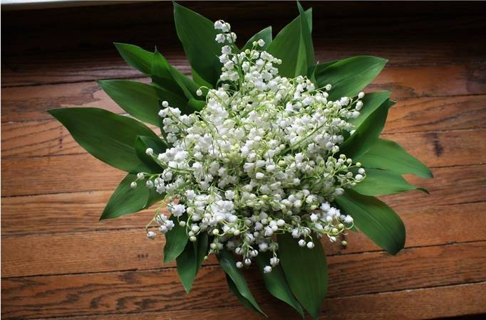 Lily Of The Valley Wedding Bouquet: Flower Inspiration: Lily Of The Valley