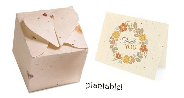 plantable favor boxes and plantable thank you cards