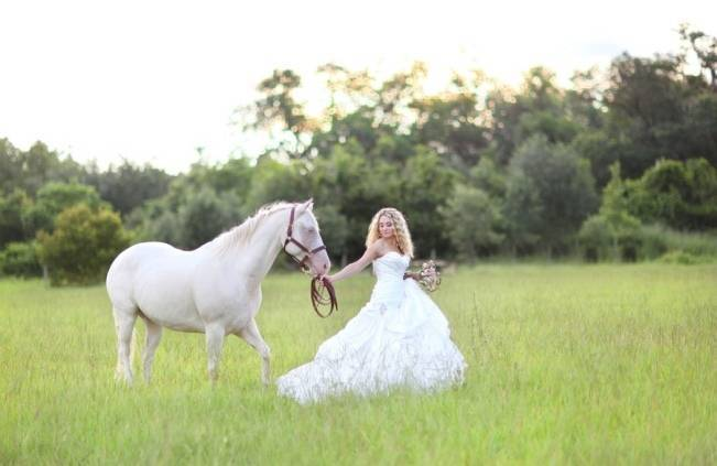 rustic wedding with horse
