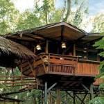 The Tree House Lodge - Costa Rica