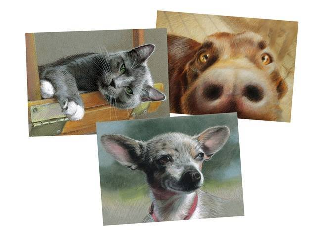 New Hampshire Pet Portrait Artist