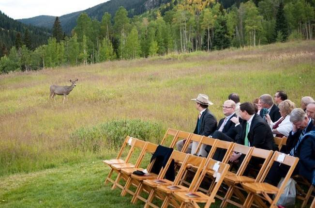 Rustic Beaver Creek Wedding at Beano's Cabin {Brinton Studios} 6