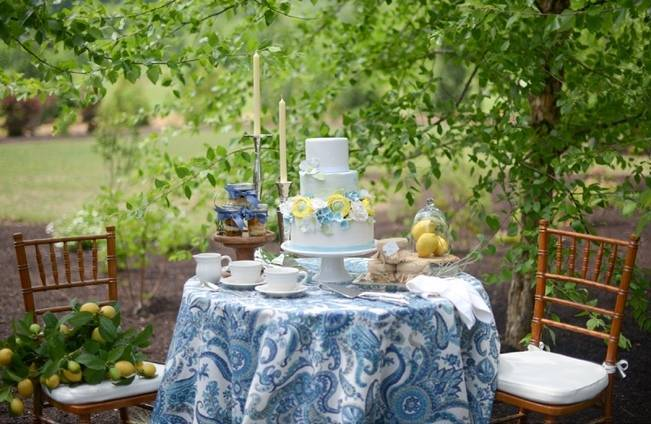 Blue + Yellow Country Chic Bridal Inspiration {Dani Fine Photography} 5