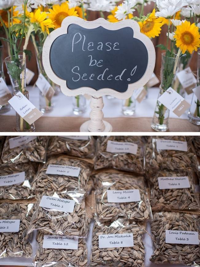 Rustic Pennsylvania Sunflower Wedding at Friedman Farms 26