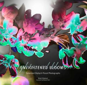 Enlightened_Blooms