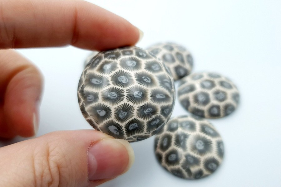 Petoskey Stone Set 02 p05