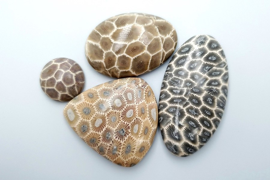 Petoskey Stone Set 03 p01