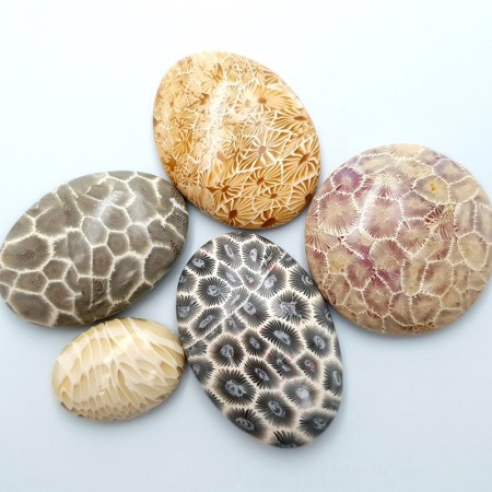 Set of 5 cabochons Faux Petoskey Stone, Polymer Clay