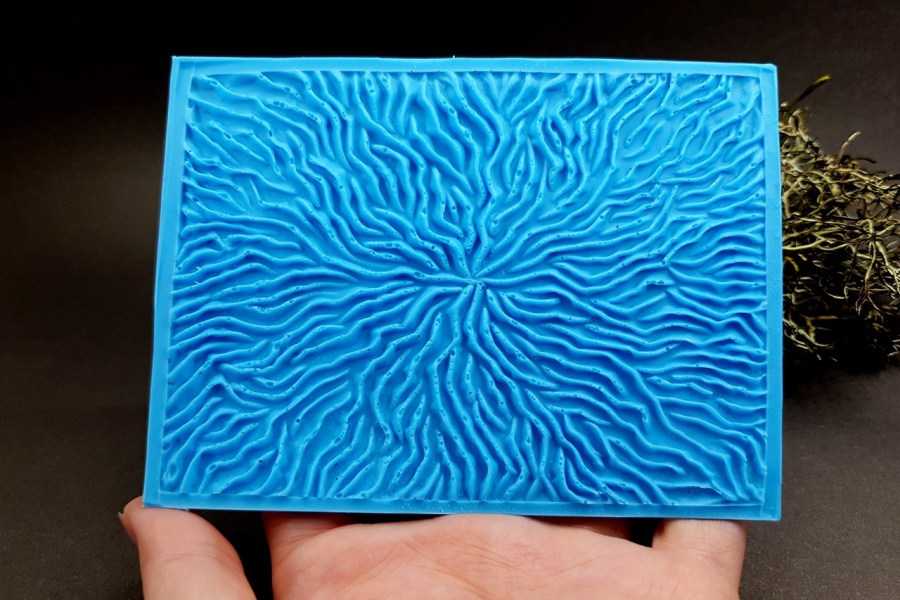 Silicone Texture The Corals (Opposite) - 108x80mm 5