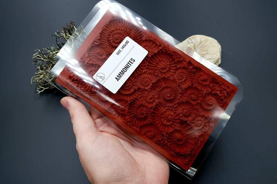 Silicone Texture Ammonites - 140x90mm 12