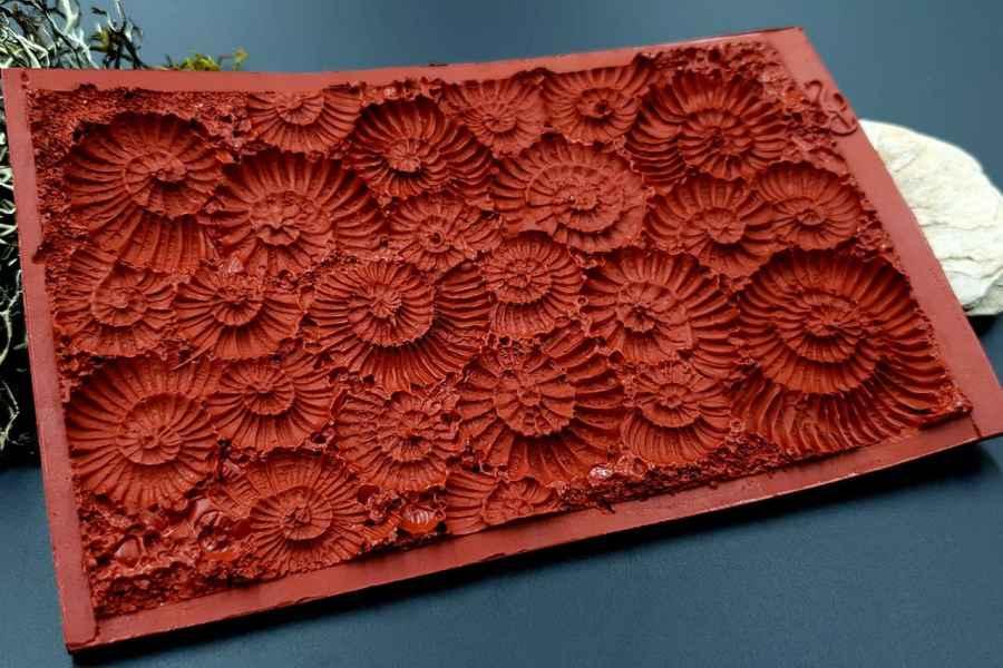 Silicone Texture Ammonites - 140x90mm 11