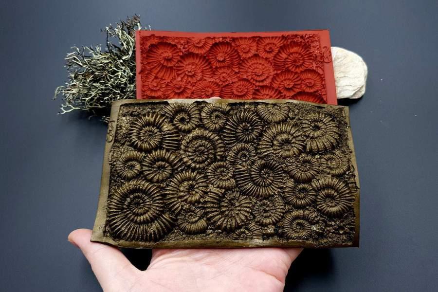 Silicone Texture Ammonites - 140x90mm 5