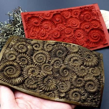 Silicone Texture Ammonites – 140x90mm