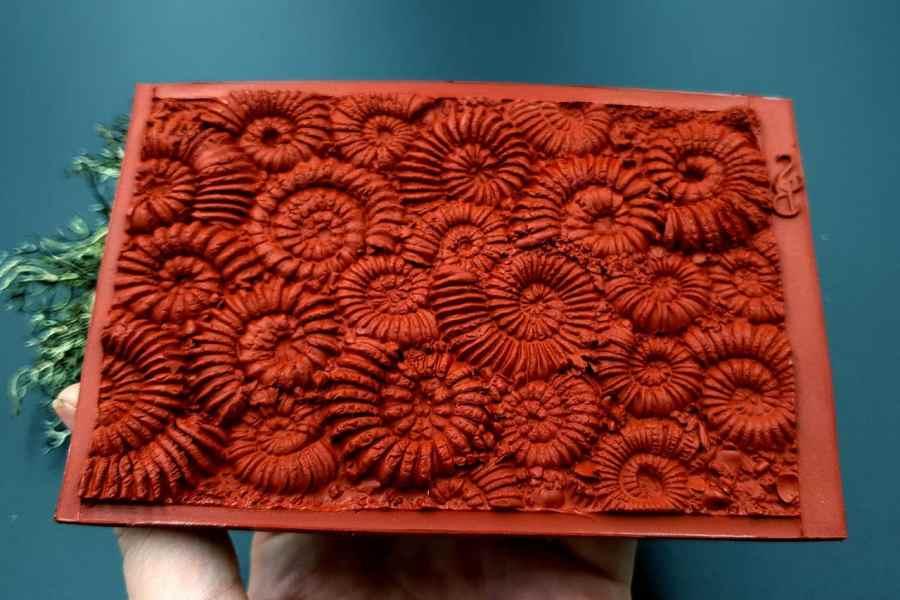 Silicone Texture Ammonites (Opposite) - 140x90mm 9
