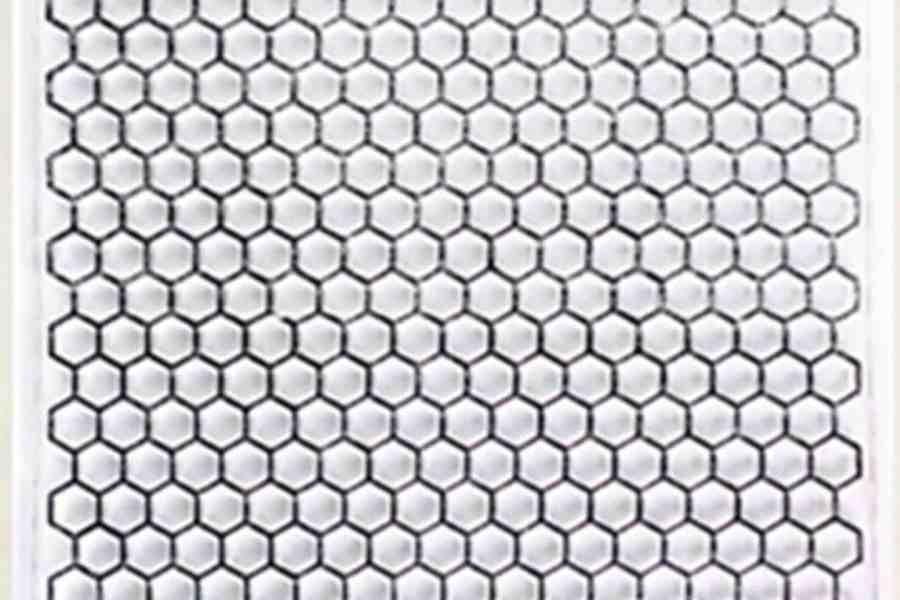 Honey Combs (10x10cm) 6