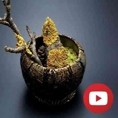 Wooden Vase Pot