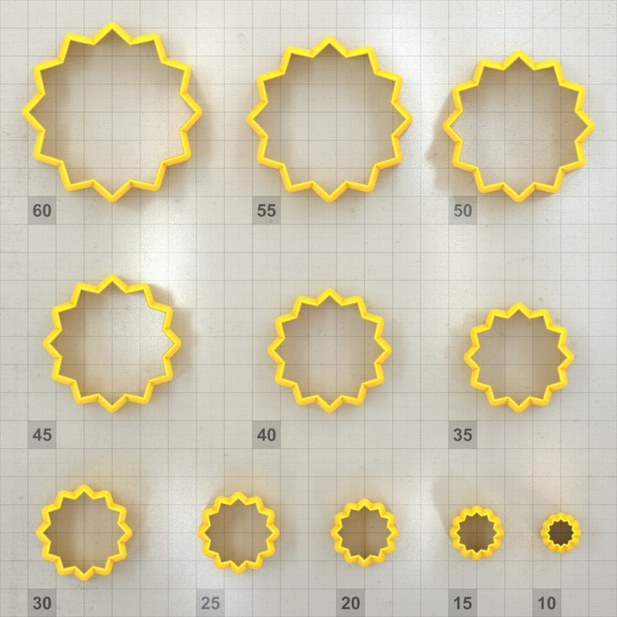 Big set of 11 plastic cutters: 12-POINTED STAR #2