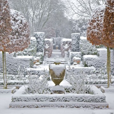 Amazing Winter Garden Landscape 01