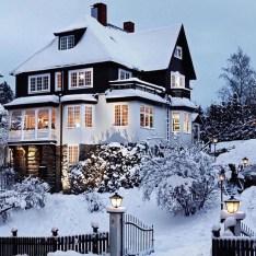 Amazing Winter Garden Landscape 05