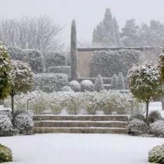 Amazing Winter Garden Landscape 07