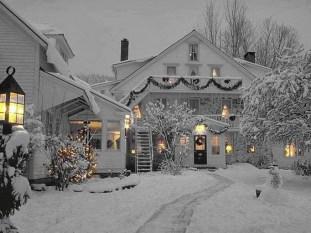 Amazing Winter Garden Landscape 08