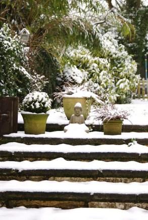 Amazing Winter Garden Landscape 10