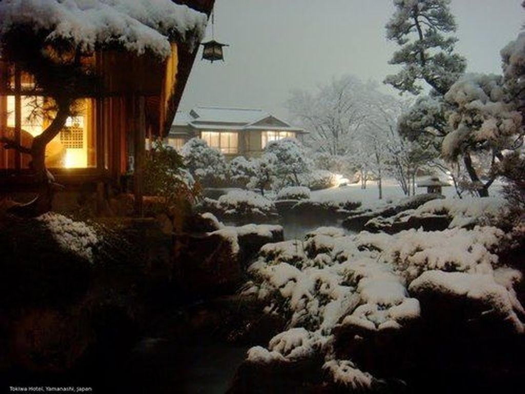 Amazing Winter Garden Landscape 18