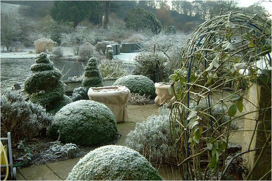 Amazing Winter Garden Landscape 26
